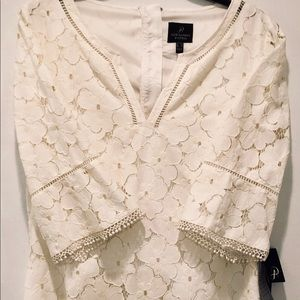 NWT Adrianna Pappel lace ivory shift dress.